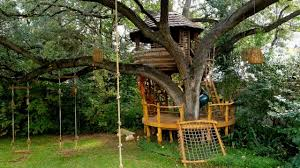 treehouse masters. Treehouse Masters T