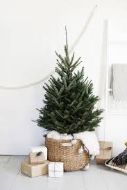 Simple Christmas Tree Display Tis The Season Christmas