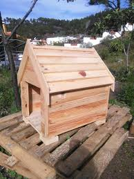 exclusive small wooden dog house plans 9 for dogs 2017 17 best 1000 ideas