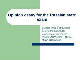 essay guide questions polsis