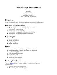 resume summary examples business management resumes extraordinary gallery of resume summary template