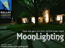 dallas landscape lighting installs landscape lighting in trees to create moonlighting effect call dallas landscape