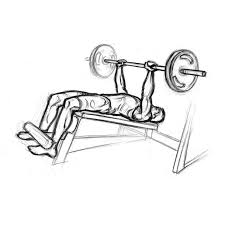 Decline Bench Press  Chest Exercise With BarbellDecline Barbell Bench