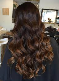 Dark Brown Hair With Caramel Highlights