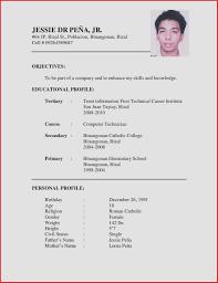 new format of cv resume sample job application new resume format sample cv format cv