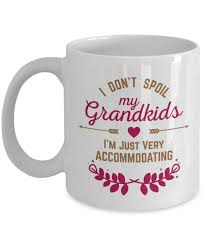 I Dont Spoil My Grandkids Im Just Very Accommodating Funny Coffee Tea Gift Mug Kitchen Decor Grandparents Day Gifts For A Grandmother