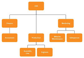Corporate Org Chart Software Lenscrafters Online Bill Payment