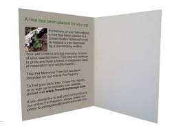 sympathy card pet pet sympathy cards pet condolences loss of a pet