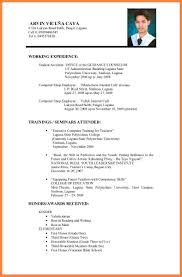 Sample Cv For Job Application Pdf Profesional Resume Template