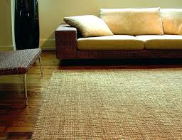 natural fiber runner best rugs pottery barn jute rug reviews chenille entrance for home