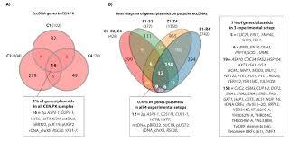 Elements Of A Venn Diagram Common Eccdna Elements In Cen Pk And S288c A Venn Diagram