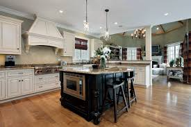 Kitchen Furnitures Do You Want To Buy Ikea Kitchen Cabinets Heres The Way Ippiocom