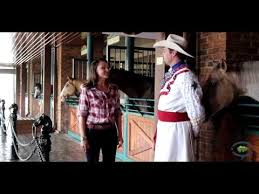 Inside Look At Dixie Stampede In Pigeon Forge Tn Youtube