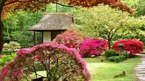 Small Picture Beautiful Garden Wallpaper Free Download VidPedianet VidPedianet