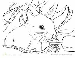 Small Picture 232 best Holidays Easter Coloring Sheets images on Pinterest