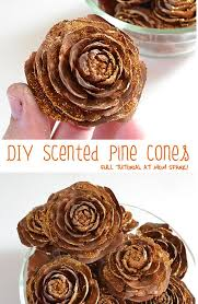 Amazoncom 13Christmas Crafts Made With Pine Cones