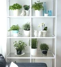 outdoor shelving unit plant stands small space herb garden shelving unit from plant stand metal garden shelving unit