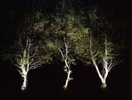 up lighting ideas. Garden Up Lighting Ideas
