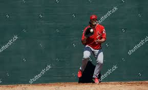 St Louis Cardinals Brett Cecil fields hit Editorial Stock Photo - Stock  Image | Shutterstock