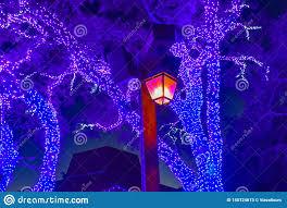Garden Of Lights January 1 Streetlight And Illuminated Trees On Christmas Garden At