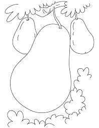 Small Picture pear coloring page pear coloring coloring pages food orange
