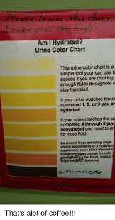 Guinea Pig Urine Chart E As E Er His Chare Am Hydrated Urine Color Chart This