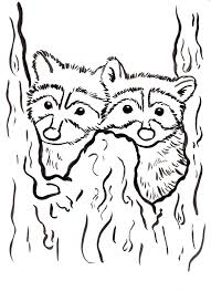 Small Picture Raccoon Coloring Page Samantha Bell