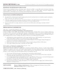 It Manager Resume Template Beauteous It Manager Resume Template General Word Cv Consulting Sample Te