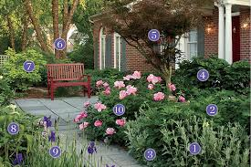 Beautiful Front Yard Flower Garden Plants For An Inviting Front Yard  Pathway Plant Identification