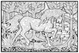 Detailed Unicorn Coloring Pages Unicorns Fairy And Image Detail For
