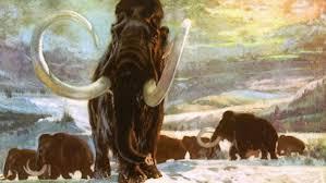 Los Mamuts podrían volver a poblar la Tierra 10.000 años después | Life -  ComputerHoy.com