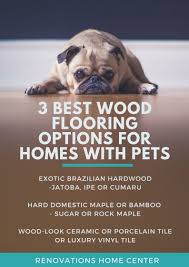 3 best wood flooring options for homes with dogs