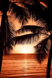 27+ Stunning Beach Sunset Pictures ...