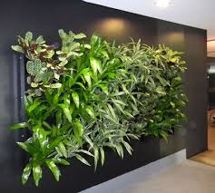 artificial green walls melbourne