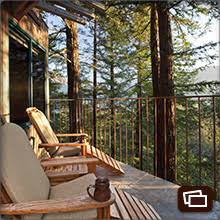 Best Treehouse Hotels In The World Top 10Treehouse Vacation California