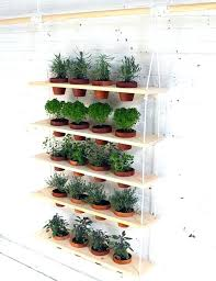 how to make an indoor herb garden. Starting A Herb Garden Hanging Fun And Easy Indoor Ideas An Indoors From Seeds How To Make