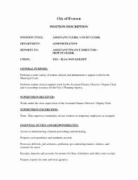 Inventory Clerk Sample Resume Bank Internal Auditor Cover Letter For