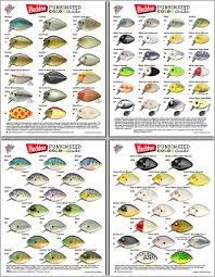 Heddon Punkinseed Color Chart Related Keywords Suggestions
