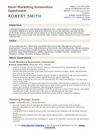 Email Marketing Automation Coordinator Resume Sample