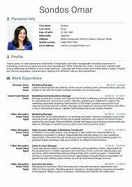 Sale Executive Resume Sample Resumes Sales Representative Channel