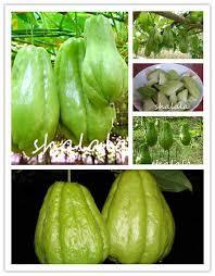 Detail Feedback Questions about 50 pcs / <b>bag</b> Japanese <b>Papaya</b> ...