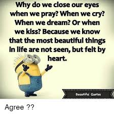 Most Beautiful Quotes About Life Best Of Why Do We Close Our Eyes When We Pray When We Cry When We Dream Or