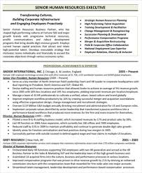 Free Executive Resume Templates Impressive 28 Free Executive Resume Templates PDF DOC Free Premium