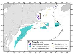 2019 2020 Sea Scallop Research Set Aside Awards Announced