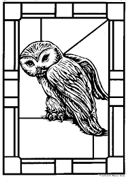 Hedwig De Uil Kleurplaat Jouwkleurplaten
