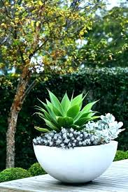 large outside flower pots garden image for contemporary plant outdoor big f plastic large flower planters