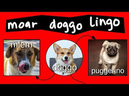 Doggo Chart Part 2