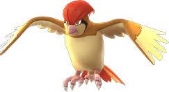 Pokemon Lets Go Pidgeotto Moves Evolutions Locations