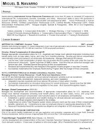 Executive Resume Templates New Resume Sample 48 International Human Resource Executive Resume