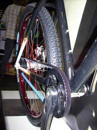 belt driven bicycle